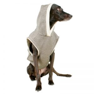 Clothing should not break the belief between the owner and dogs